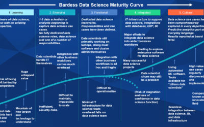 The Bardess Data Science Maturity Curve